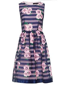 Zibi London Satin Stripe Floral Print Dress