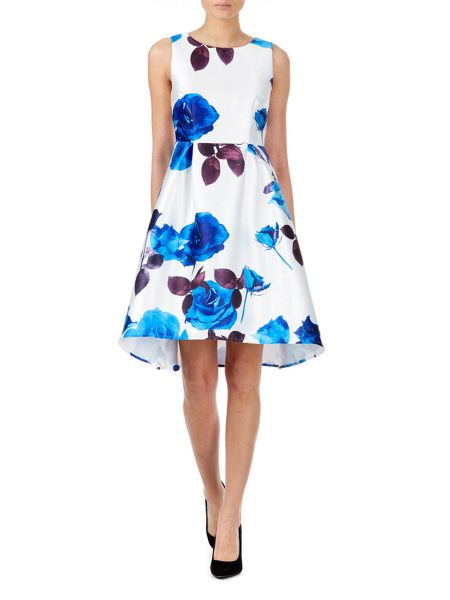 Zibi London Rose Printed Dress