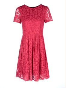 Zibi London Cap Sleeve Fit and Flare Lace Dress