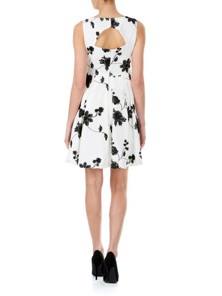 Zibi London Embroidered Skater Dress