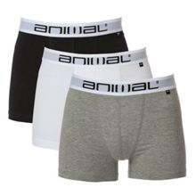 Animal Asta 3 pack boxer short