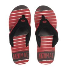 Animal Jekyl Torn flip flop