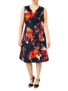 Plus Size Harper print dress