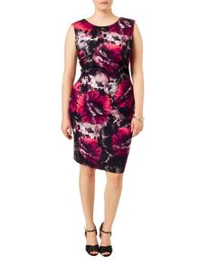 Studio 8 Plus Size Pippa print dress