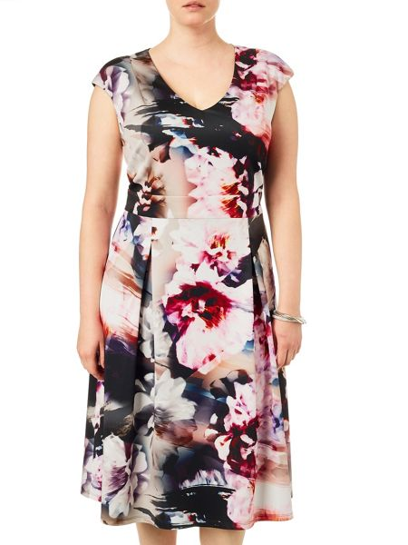 Studio 8 Plus Size Becky scuba dress