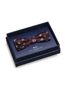 Wine Small Paisley Bow Tie