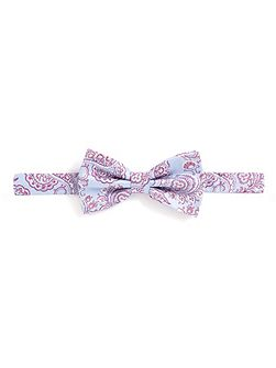 Pale Blue & Wine Bow Tie