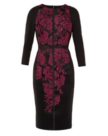 Ted Baker Mirai Embroidered mesh bodycon dress