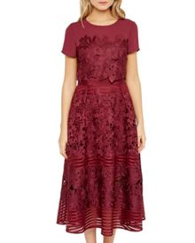 Ted Baker Jeyla Sheer panel lace dress