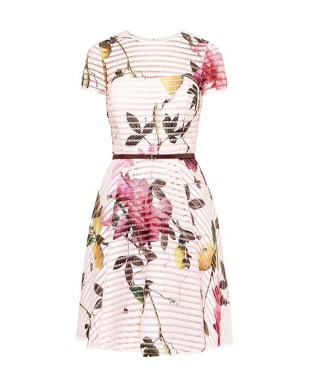 Ted Baker Camari Citrus Bloom Mesh Dress