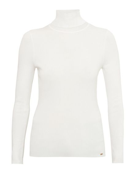 Ted Baker Brynie Fitted roll neck jumper