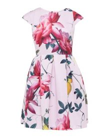 Ted Baker Tillea Citrus Bloom Pleated Dress