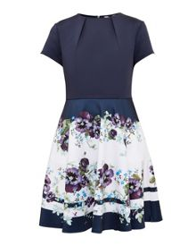 Ted Baker Stefh Entangled Enchantment skater dress