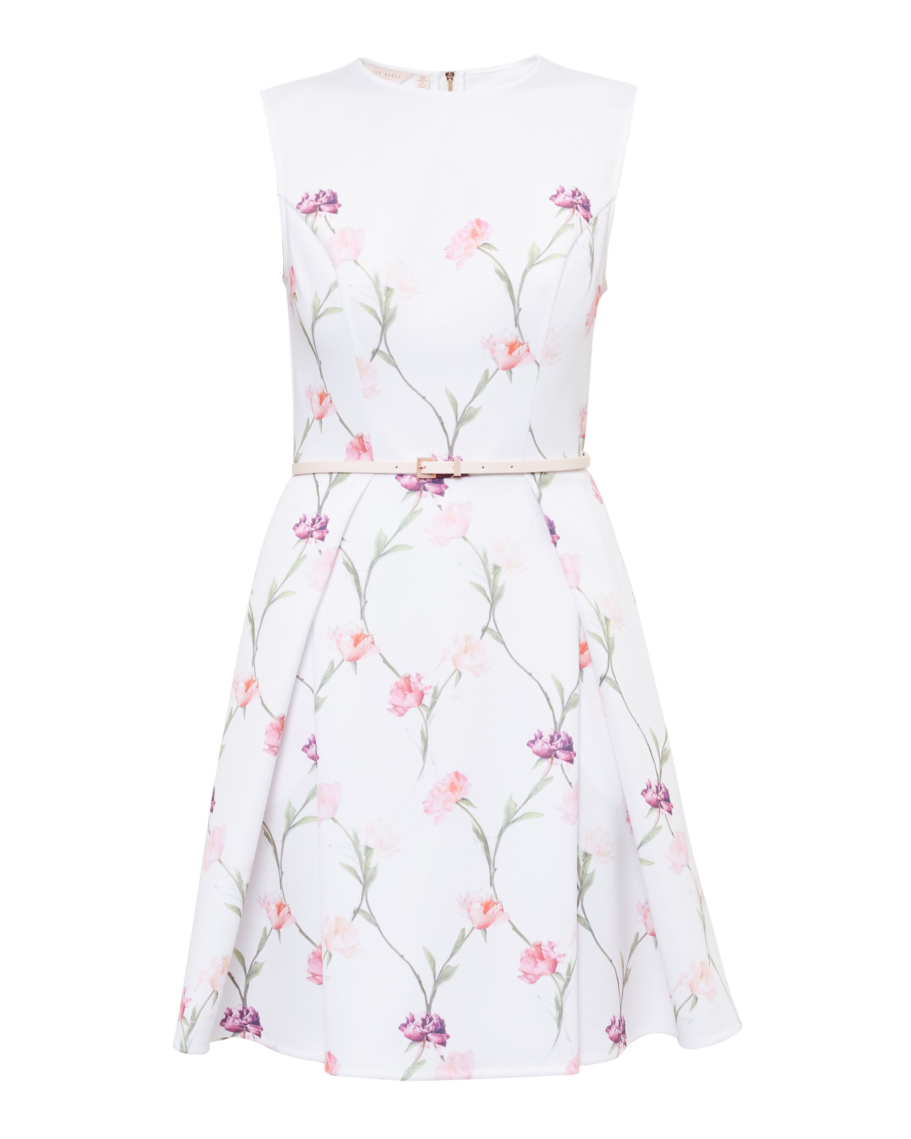 Ted Baker Ahlanna Sketchbook Floral Skater Dress, Cream