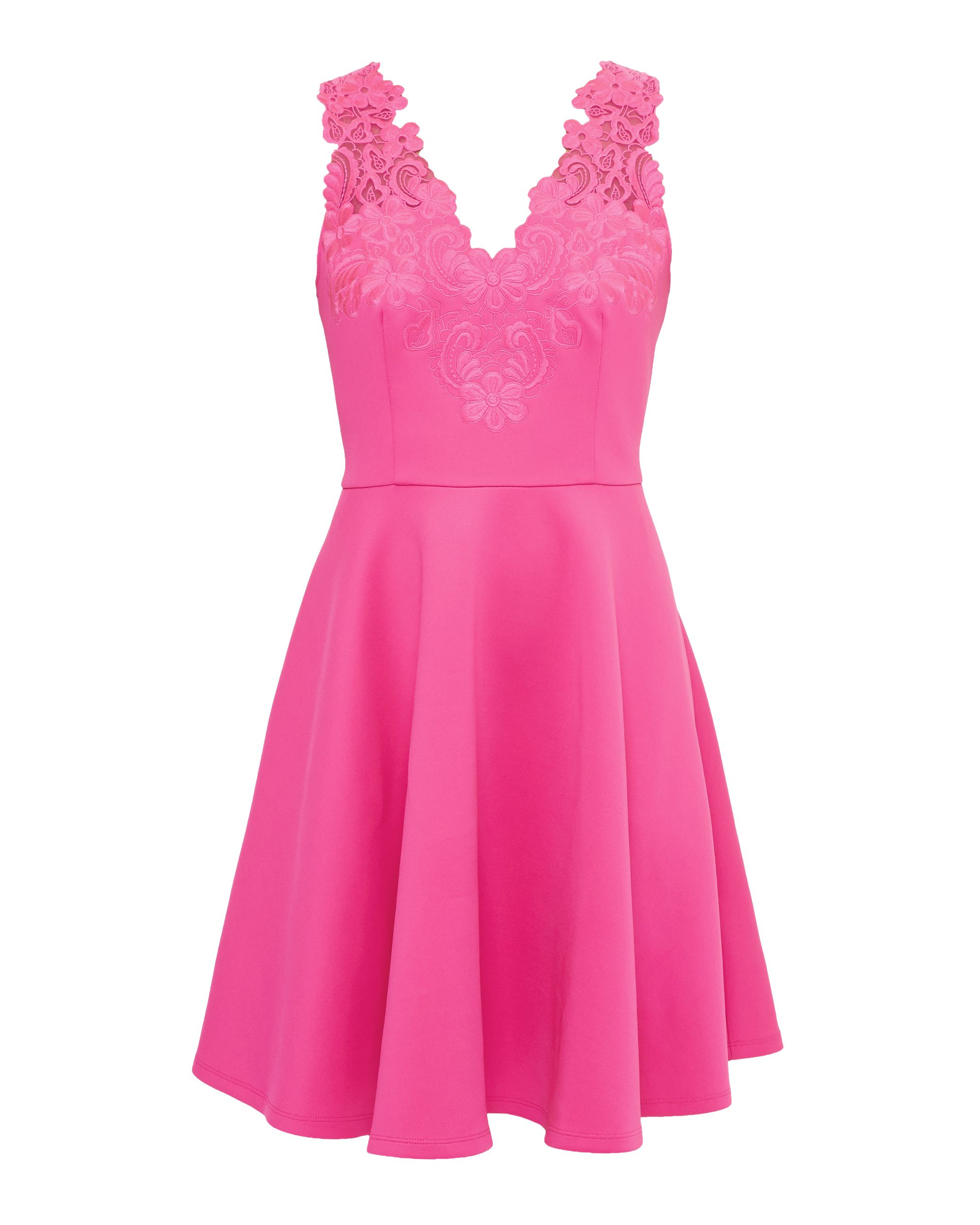 Ted Baker Taliia Embroidered Lace Skater Dress, Fuchsia