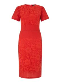 Red Mixed Lace Pencil Dress