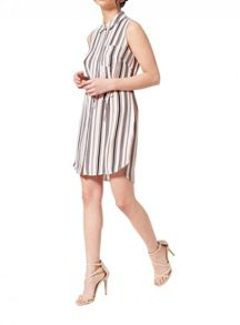 Miss Selfridge Petites Stripe Shirt Dress