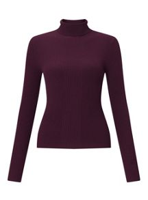 Miss Selfridge Wine Knitted Rib Roll Neck