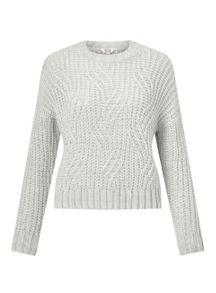 Miss Selfridge Petite Chunky Weave Jumper