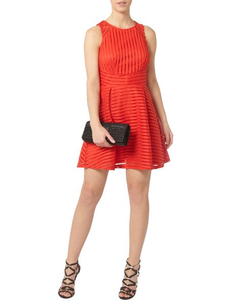 Dorothy Perkins Petite Coral Flare Dress