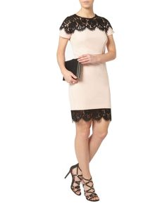 Dorothy Perkins Petite Lace Trim Dress
