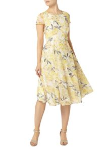 Dorothy Perkins Floral Printed Fit and Flare Dress