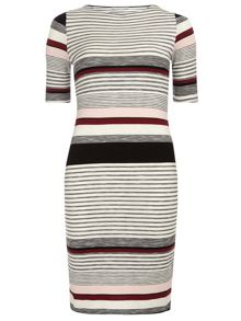 Dorothy Perkins Petite Raspberry Stripe Dress