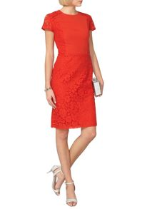 Dorothy Perkins Lace Chiffon Pencil Dress