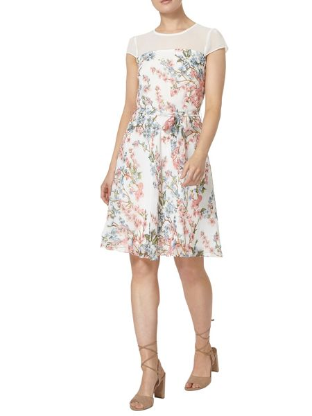 Dorothy Perkins Billie and Blossom Floral Sheer Dress