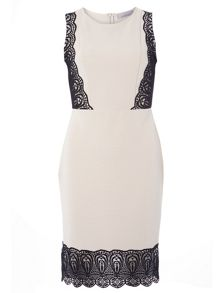 Dorothy Perkins Petite Rib Detail Dress