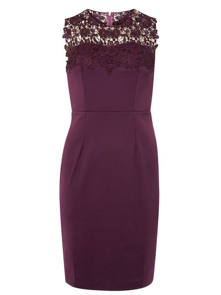 Dorothy Perkins Showcase Sophia Bodycon Dress