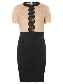 Dorothy Perkins Lace Top 2 in 1 Pencil Dress