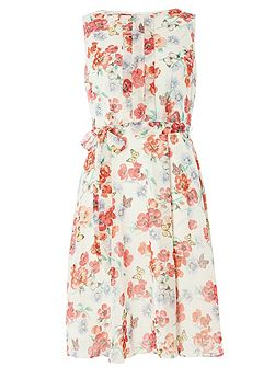 Billie and Blossom Butterfly Dress
