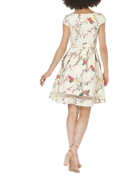 Dorothy Perkins Blossom Poplin Fit and Flare Dress