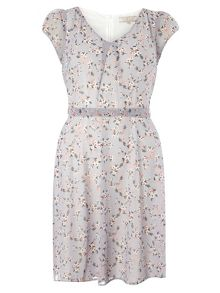 Dorothy Perkins Billie and Blossom Floral Dress