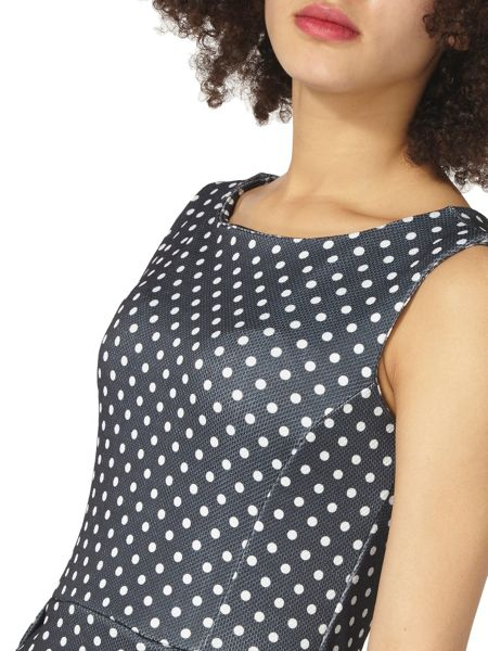 Dorothy Perkins Spotty Fit and Flare Dress