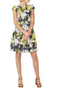 Dorothy Perkins Floral Cotton Fit and Flare Dress