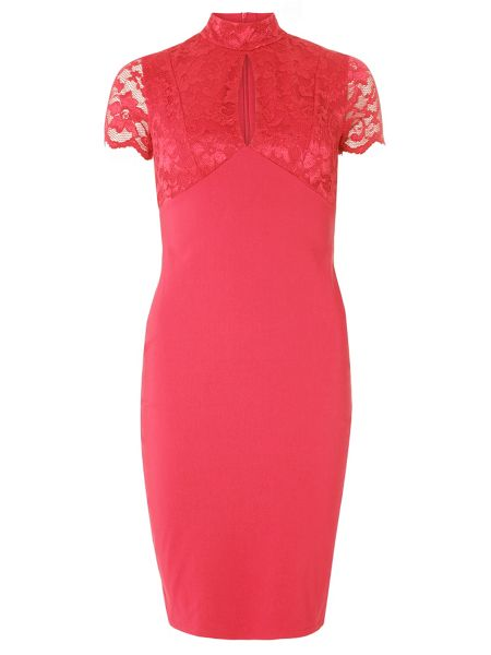 Dorothy Perkins Holly Lace Dress