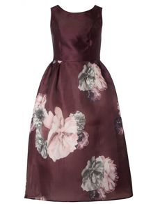 Dorothy Perkins Luxe Bloom Prom Dress