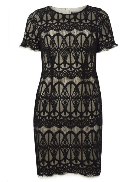 Dorothy Perkins Eyelash Lace Pencil Dress