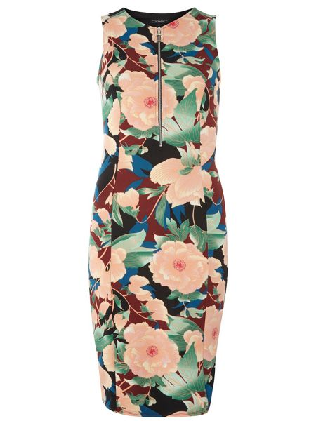 Dorothy Perkins Printed Scuba Pencil Dress