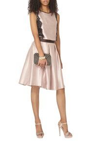 Dorothy Perkins Metallic Full Skirt