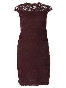 Dorothy Perkins Petite Guipure Dress