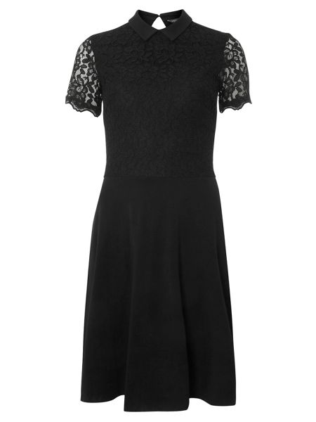 Dorothy Perkins Tall Lace Collared Dress