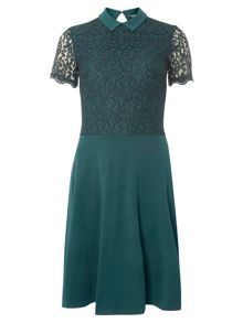 Dorothy Perkins Tall Lace Collar Dress