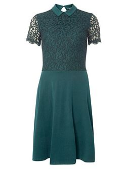 Tall Lace Collar Dress