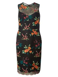 Dorothy Perkins Embroidered Mesh Pencil Dress