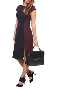 Dorothy Perkins Petite Colour Block Dress