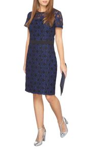 Dorothy Perkins Petite Lace Dress
