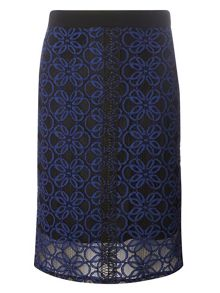Dorothy Perkins Petite Lace Skirt